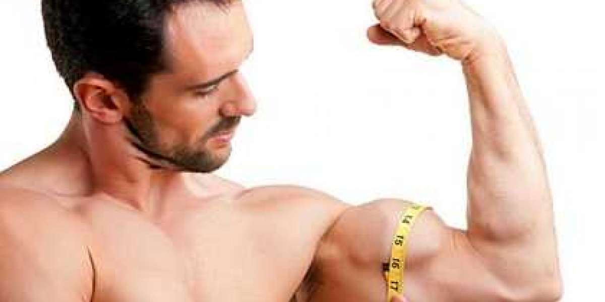 Learn Precisely how to Build Muscles At this moment!