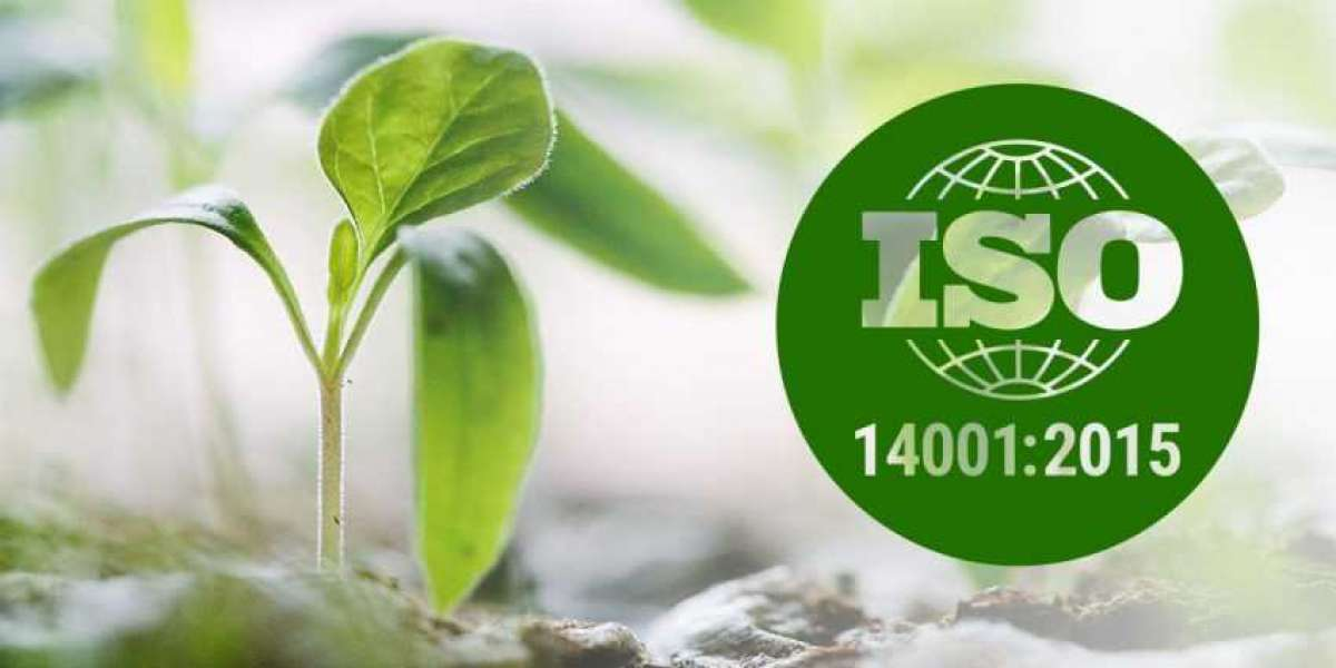 12 steps to make the transition from ISO 14001:2004 to 2015 revision