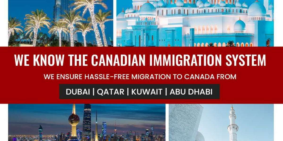 Should I Apply for the Canadian Permanent Residency (Express Entry) on My Own or Through a Best Canada Immigration